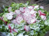 Salata verde cu conopida si ridichi